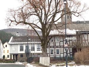 Hauptsonderschau 2021 in Breidenbach